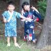 inline_120824094411.jpeg