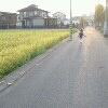 inline_121020084350.jpeg